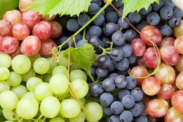 Grapes for Arthritis