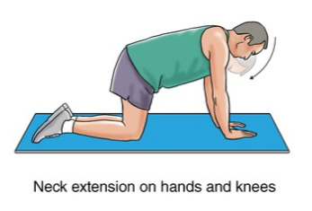 neck extension on hands and knees exercise for neck strain rehabilitation