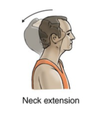 neck extension exercise for neck strain rehabilitation
