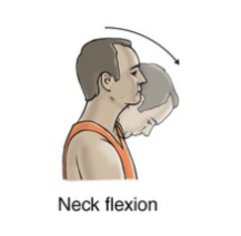 neck flexion exercise for neck strain rehabilitation