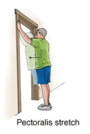 pectoralis stretch exercise for upper back strain rehabilitation
