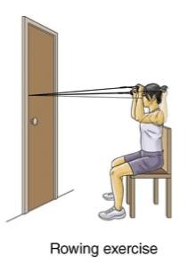 rowing exercise for upper back strain rehabilitation