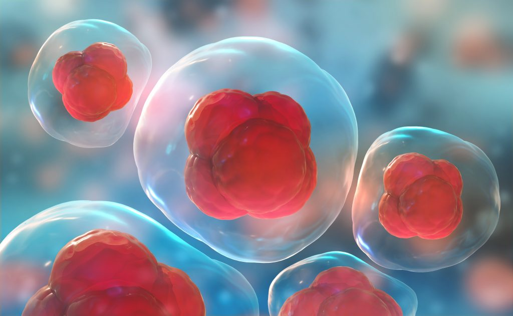 The Cost of Stem Cell Therapy