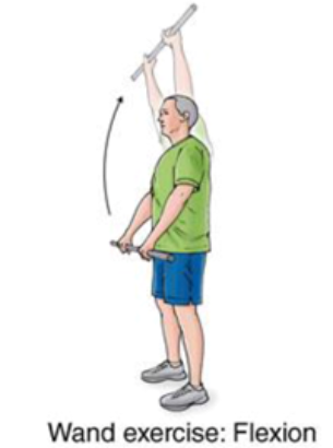 wand exercise with flexion