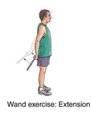 wand exercise with extension