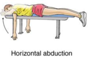 hoizontal abduction