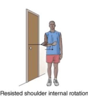 Resisted shoulder internal rotation