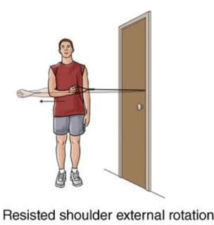 Resisted shoulder external rotation